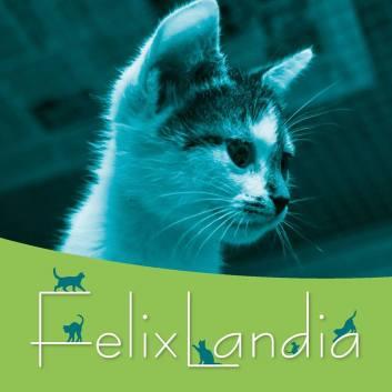 copertina felix